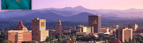 ACE VacuTherapies Institute Scoliosis Workshop – October 21 – 25 in Asheville, NC